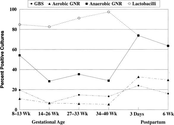 amitriptyline and fibromyalgia side effects