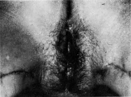 Gay men pissing in glory holes