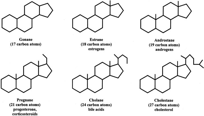 classification of steroids, based on the number of carbons in the molecule