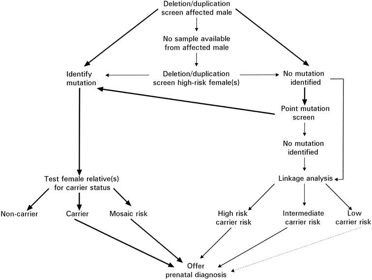 Molecular and Mendelian Disorders | GLOWM